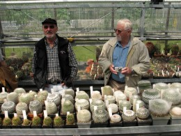 Jahresausflug 2007 Botanischer Garten Muenchen Besichtigung der Kakteensammlung