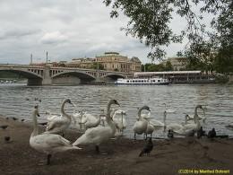 DKG-Jahresausflug Prag 2014 Prager Impressionen Blick aufs Rudolfinum