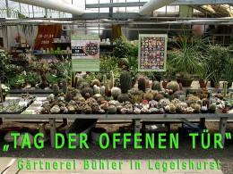 Ausstellung Gaertnerei Buehler Legelshurst 2008